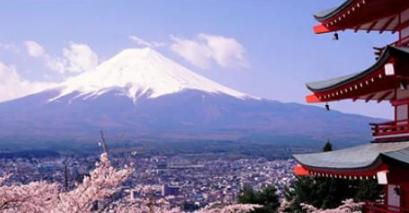 如何选择日本海淘转运公司避免掉坑?