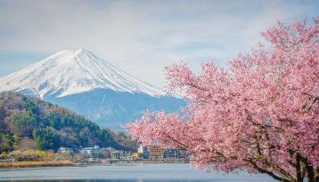 日本海淘转运公司选哪家好?