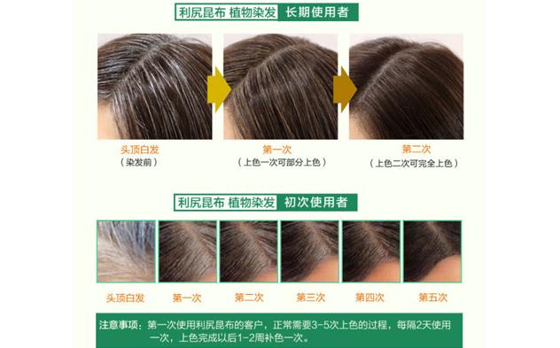 自然派 纯天然 利尻昆布 染发洗发二合一洗发水200ml 深棕色