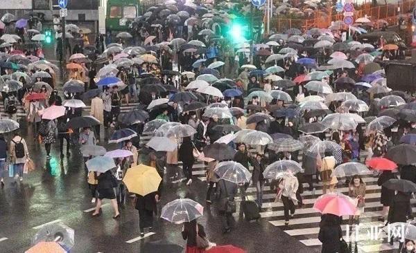 日本的雨伞为什么是透明的