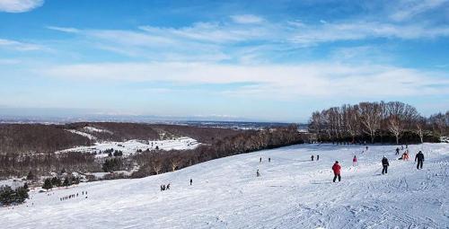 札幌有哪些适合初学者的滑雪场