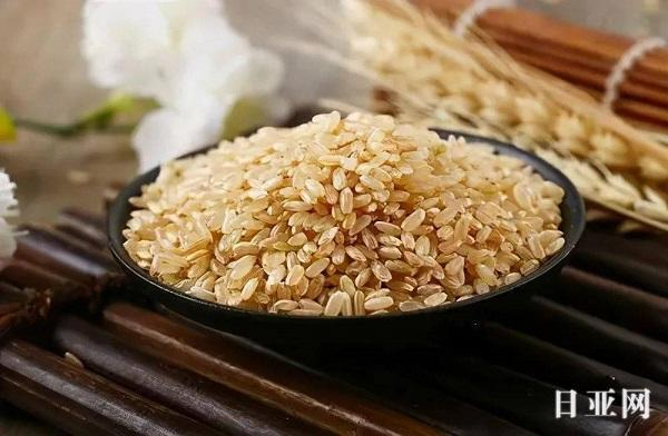 日本大米为什么好吃?