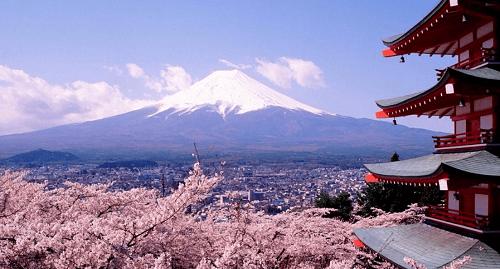 日本冷知识带你了解日本