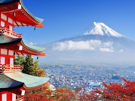 日本转运公司选择技巧攻略分享